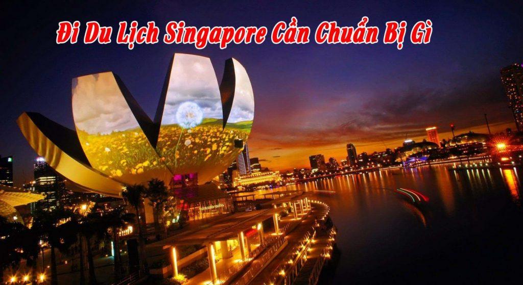 Cần mang theo những gì khi du học Singapore 2019