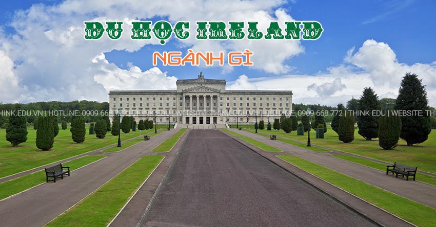 Nên chọn ngành nào khi du học Ireland?
