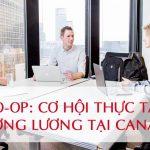 Co-op Canada thực tập hưởng lương